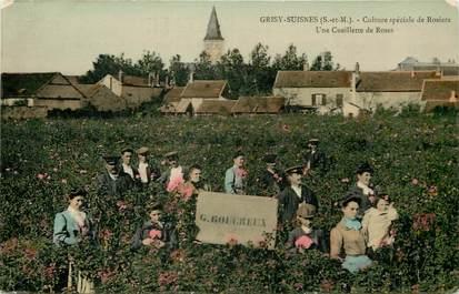 """CPA FRANCE 77  """"Grisy Suisnes, Cueillette des Roses"""""""