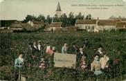 """77 Seine Et Marne CPA FRANCE 77  """"Grisy Suisnes, Cueillette des Roses"""""""