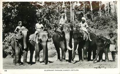 "CPSM   SRI LANKA  "" Parade d'éléphants"""