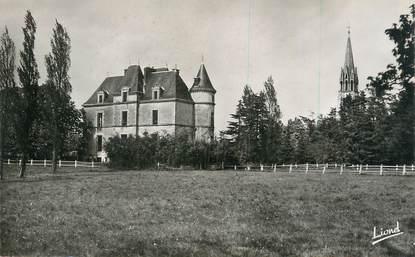 """.CPSM  FRANCE 85  """"Les Brouzils, Château de Ligny"""""""