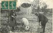 """46 Lot CPA FRANCE 46 """"Le Lot pittoresque, les gaveurs de truffes"""" / FOLKLORE / COCHON"""