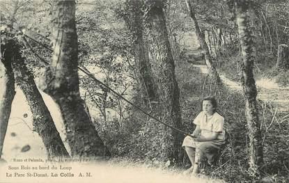 """CPA FRANCE 06 """"La Colle, Le Parc Saint Donat"""""""