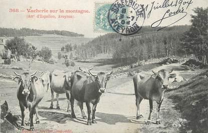 """.CPA FRANCE 12 """" Vacherie sur la montagne"""" / FOLKLORE"""