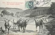 """12 Aveyron .CPA FRANCE 12 """" Vacherie sur la montagne"""" / FOLKLORE"""