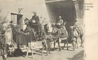 """CPA EGYPTE """"Chameaux de mariage arabe"""""""