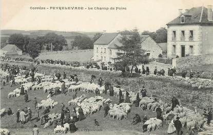 """.CPA  FRANCE 19  """"Peyrelevade, Le champ de foire"""""""