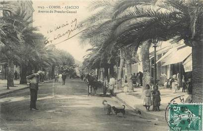 """.CPA FRANCE 20 / CORSE """"Ajaccio, Avenue du Premier consul"""""""