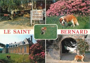 "CPSM FRANCE 76 ""Offranville, le Saint Bernard"""