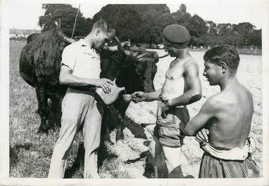 """PHOTO ORIGINALE / FRANCE 78 """"A la Ferme école de Bailly, 1942"""""""