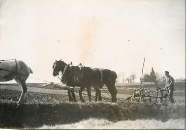 "PHOTO ORIGINALE / THEME AGRICULTURE ""Le labourage"""