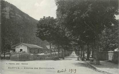 """CPA FRANCE 01 """" Nantua, Avenue des Marronniers""""."""