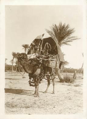 PHOTO ORIGINALE / SCENES ET TYPES ARABES