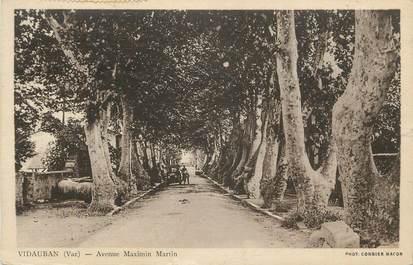 "CPA FRANCE 83 ""Vidauban, Avenue Maximin Martin""."
