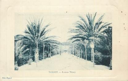 """CPA FRANCE 83 """"Tamaris, Avenue Thierry""""."""