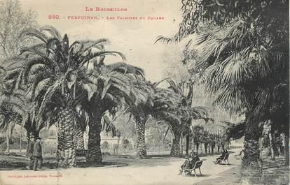 """CPA FRANCE 66 """"Perpignan, Les palmiers du Square""""."""