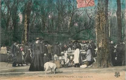 """CPA FRANCE 69 """"Lyon, Parc de la Tête d'Or, la cage aux ours""""."""