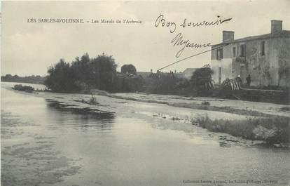 """CPA FRANCE 85 """" Les Sables d'Olonne, Les Marais de l'Aubraie""""."""