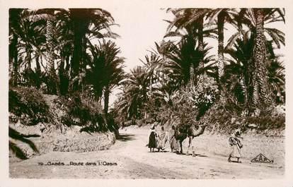 """CPA TUNISIE """"Gabès, Route dans l'Oasis"""""""