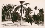 "Tunisie CPA TUNISIE ""Gabès, Route de Sfax dans l'Oasis"""