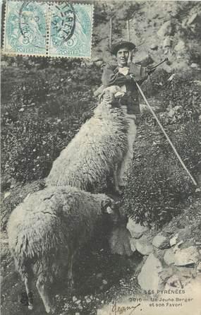 """CPA FRANCE 65 """" Les Pyrénées, Un jeune berger et son favori"""". / FOLKLORE"""