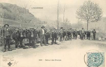 """CPA FRANCE 15 """" En Auvergne, Retour des champs"""". / FOLKLORE"""
