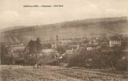 """CPA FRANCE 89 """" Bussy en Othe, Panorama"""". / APICULTURE"""
