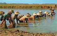 Asie CPSM THAILANDE