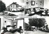 """21 Cote D'or CPSM FRANCE 21 """" Chatillon sur Seine, Sylvia Hôtel""""."""