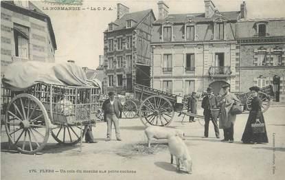 """CPA FRANCE 61 """"Flers, Un coin du marché aux petits cochons""""."""