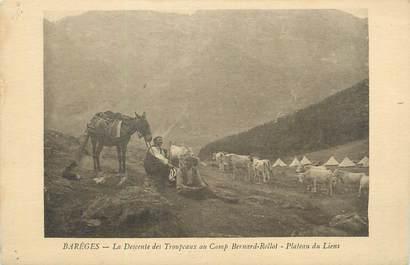 """CPA FRANCE 65 """" Barèges, La descente des troupeaux au camp Bernard Rollot, plateau de Liens""""."""