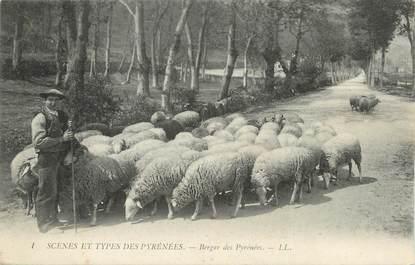 """CPA FRANCE 65 """" Scènes et types des Pyrénées, Un berger""""."""