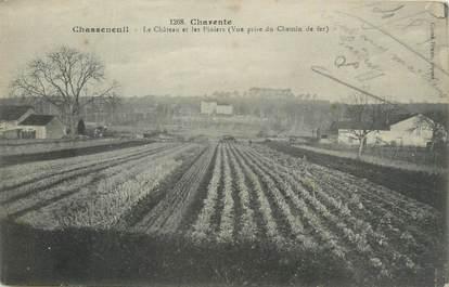 """CPA FRANCE 16 """"Chasseneuil, Le château et les piniers""""."""