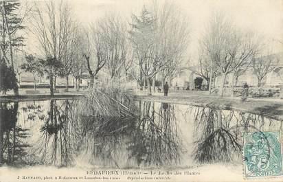 """CPA FRANCE 34 """" Bédarieux, Le jardin des plantes""""."""