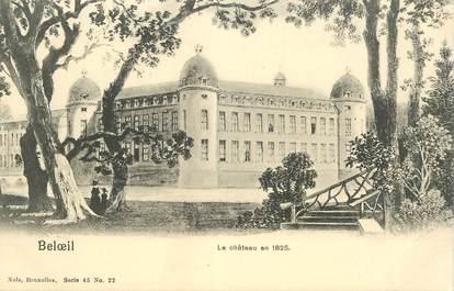 """CPA BELGIQUE """"Beloeil, le chateau"""""""