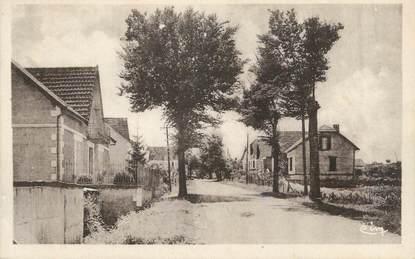 """CPA FRANCE 24 """" Le Buisson, Route de Cadouin'."""