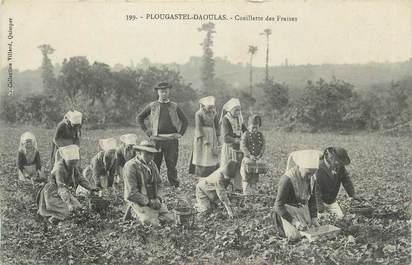 """CPA FRANCE 29 """" Plougastel - Daoulas, Cueillette des fraises""""."""