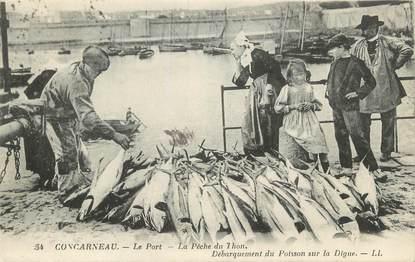 """CPA FRANCE 29 """" Concarneau, Le port, la pêche du thon""""."""