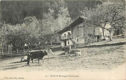 """CPA FRANCE 73 """"Chalet de Montagne"""""""