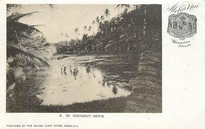 "CPA HAWAII ""Cocoanut grove"""
