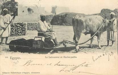 """CPA EGYPTE """"Le Laboureur et Hache paille"""""""