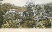 Antille CPA JAMAIQUE