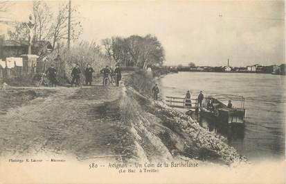 """CPA FRANCE 84 """" Avignon, Un coin de la Barthelasse"""""""