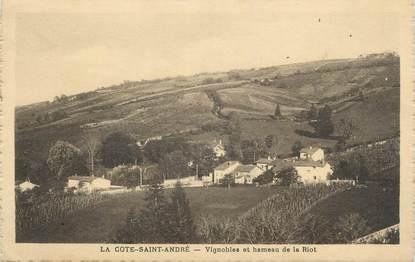 """CPA FRANCE 38 """" La Côte St André, Vignobles et hameau de la Riot"""""""