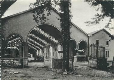"""CPSM FRANCE 87 """"La Jonchère, Walmath, Intérieur de la ferme"""""""