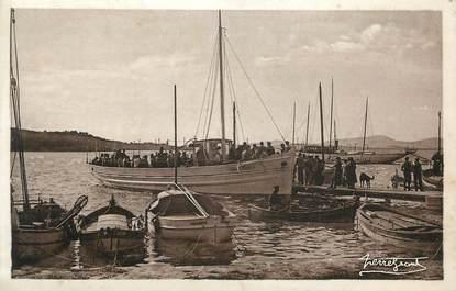 """CPA FRANCE 83 """"Ile de Porquerolles, Le Corail Rouge """""""