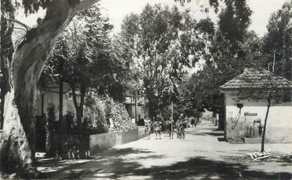 """CPSM FRANCE 83 """"Ile de Porquerolles, Rue de la Ferme"""""""