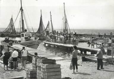 """CPSM FRANCE 83 """"Hyères , Les Salins, Le port"""""""