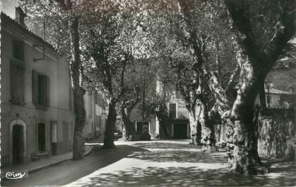 """CPSM FRANCE 83 """" La Roquebrussanne, Route de Mazaugues, L'Orbitelle"""""""