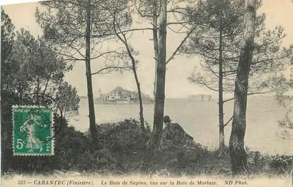 """CPA FRANCE 29 """" Carantec, Le Bois de Sapins vue sur la Baie de Morlaix"""""""