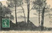 """29 Finistere CPA FRANCE 29 """" Carantec, Le Bois de Sapins vue sur la Baie de Morlaix"""""""